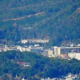 船岡山の写真