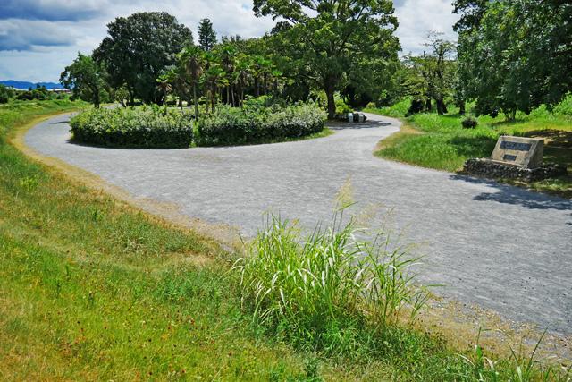 嵐山東公園の写真