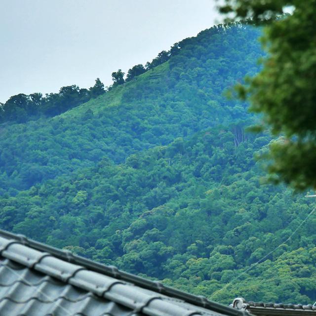 粟田神社から五山送り火