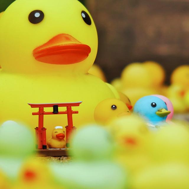 粟田神社のあひる手水