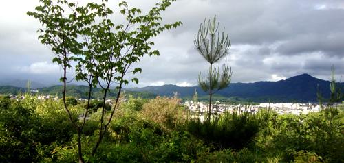 船岡山からの景色