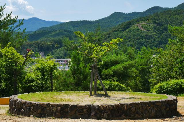船岡山から五山の送り火