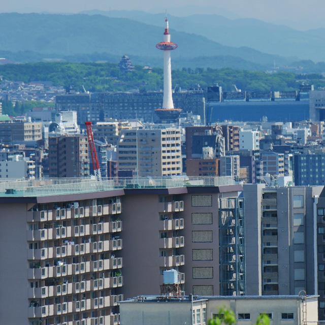 船岡山から京都タワーと伏見桃山城