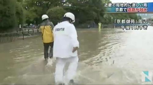 京都御苑 冠水