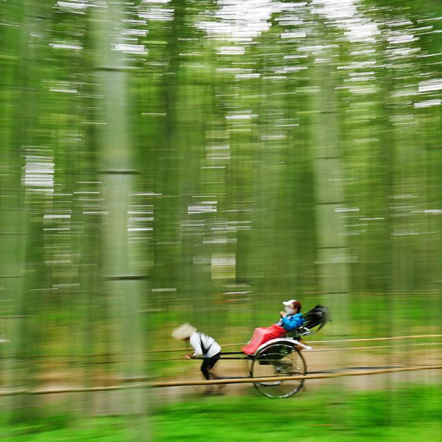 嵯峨野の人力車の写真