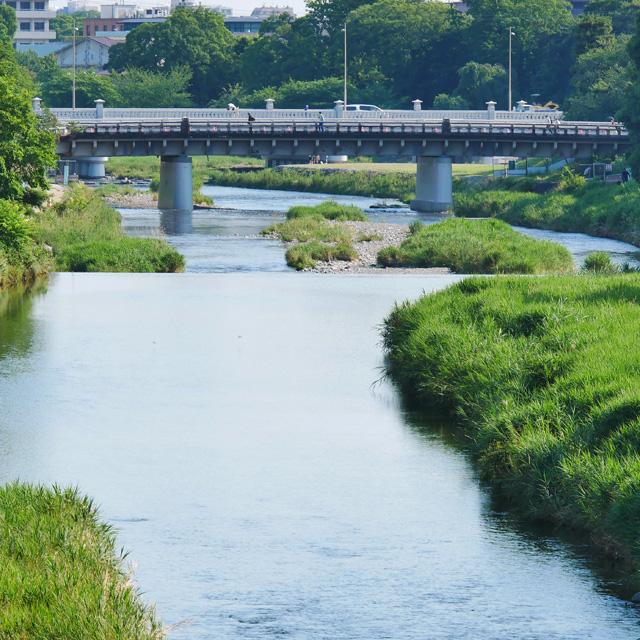 高野川の河合橋
