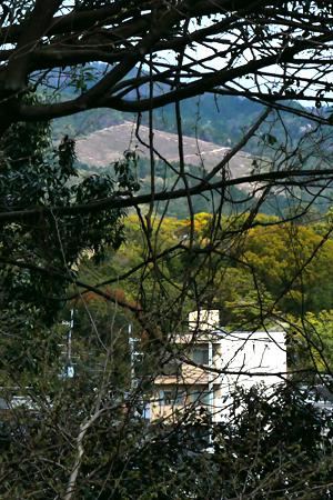 建勲神社で五山送り火
