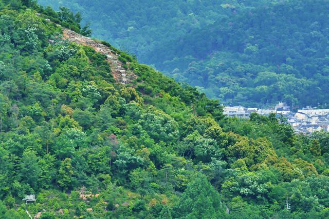 衣笠山 五山送り火の写真