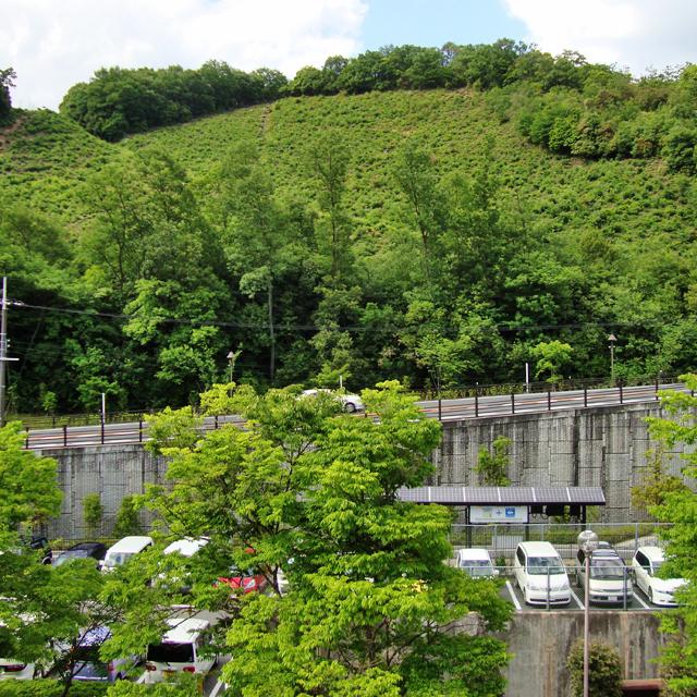 松ヶ崎駅周辺