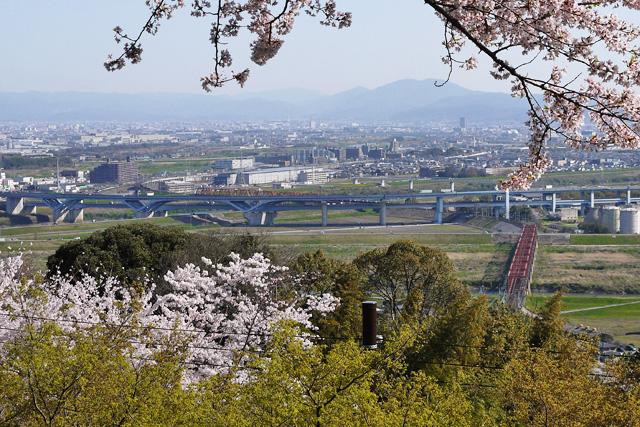 男山(鳩ヶ峰)の展望台