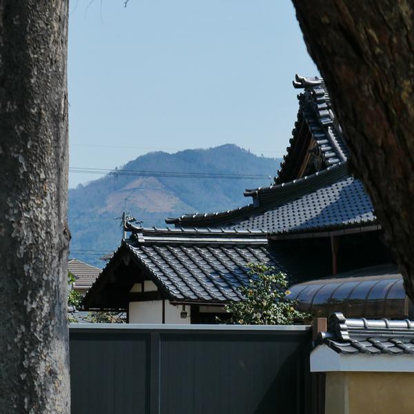 相国寺の写真
