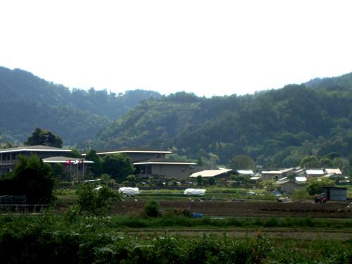 佛教大学付属幼稚園から見た鳥居